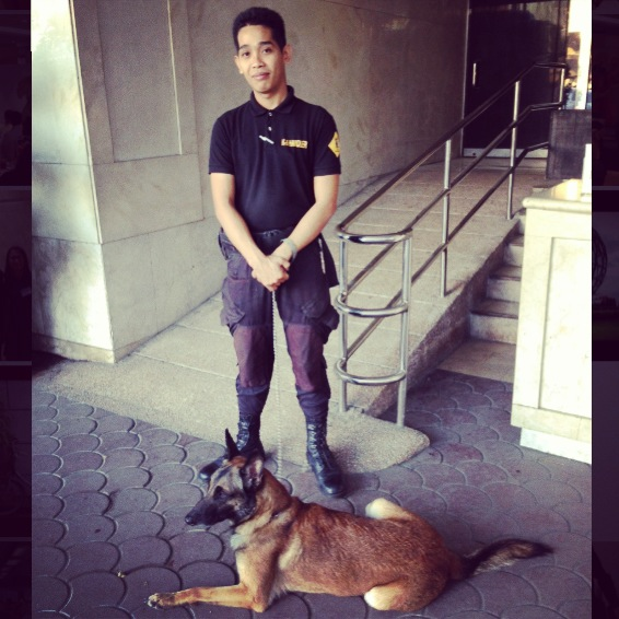 Leaving the hotel.  The bomb-sniffing dog that occupies the entrance.